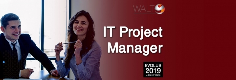IT Project Manager for Cork, Ireland